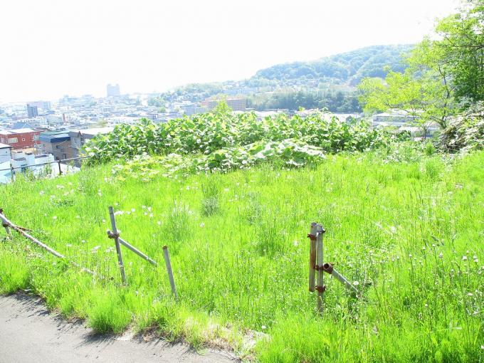 北海道小樽市奥沢2丁目1-21 の売買土地物件詳細はこちら