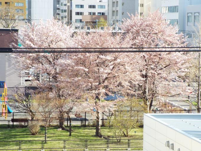 札幌市中央区の中古マンション 画像2