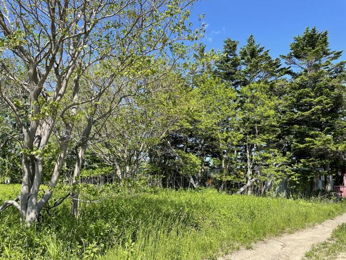 札幌市北区篠路町篠路394-223 画像2