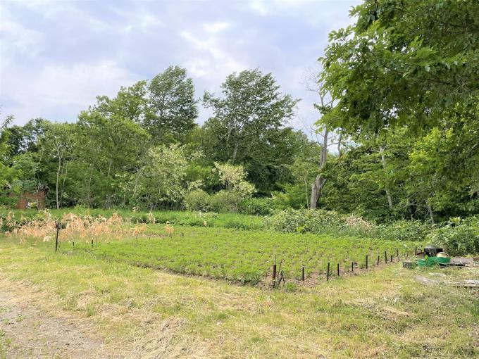 北海道北広島市西の里431-43 の売買土地物件詳細はこちら