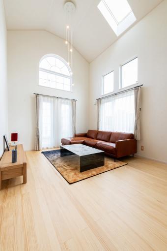 【コスモ建設】4.9m高天井の贅沢空間~平屋    Paris  パリ 画像2